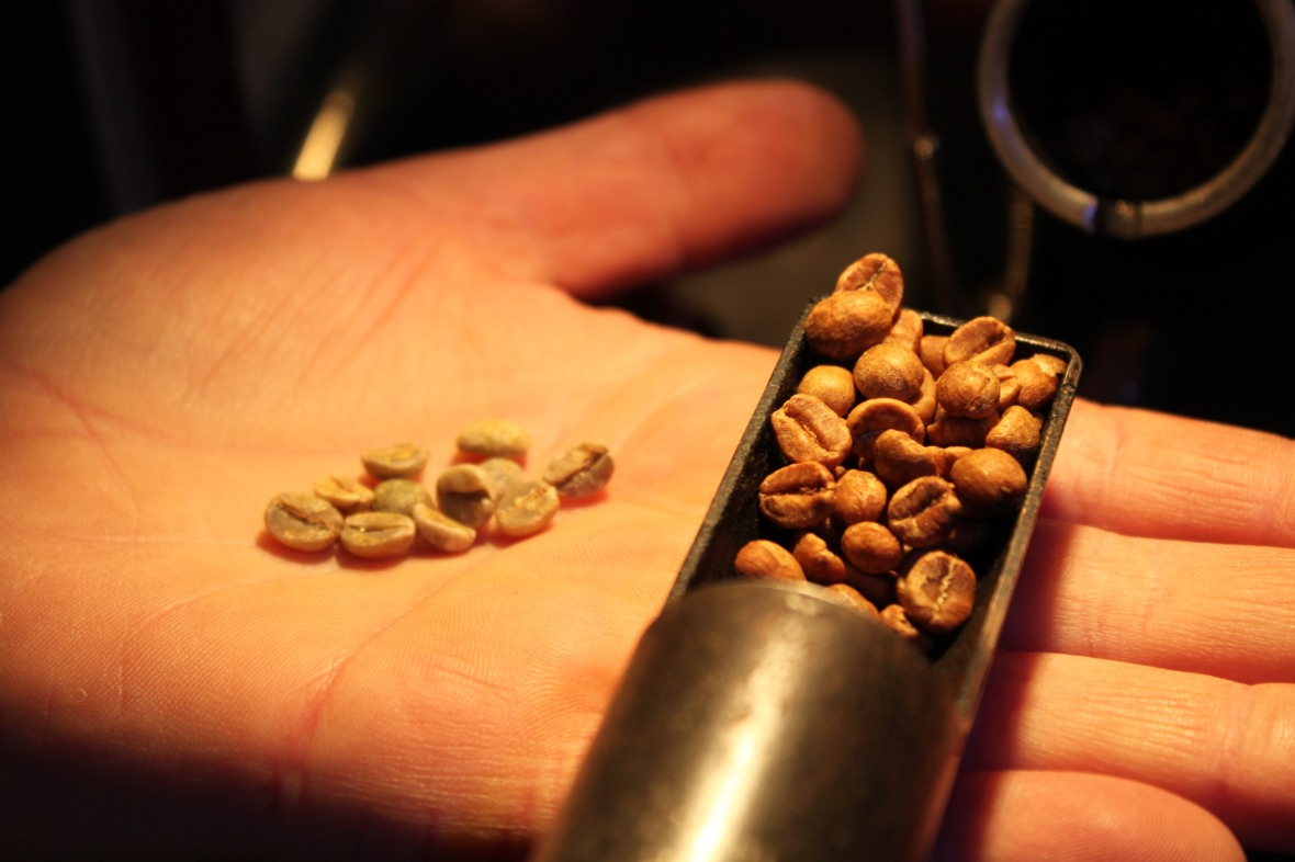 Checking-coffee-beans-mid-roast